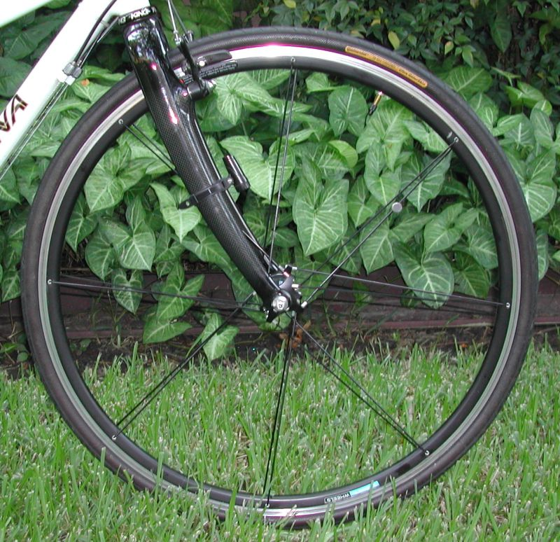 Shimano Sweet 16 wheels and Carbon Fiber Fork