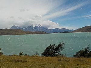 wind blown in Torres de Paine Nacional Parque